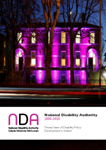 20 Years of Disability Policy front page preview